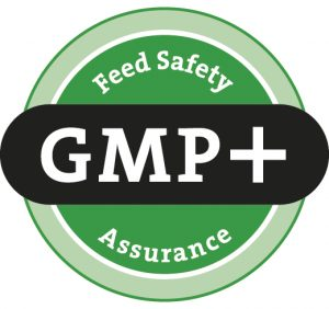 gmp + الشعار
