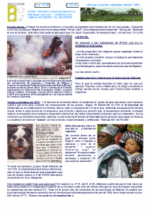 RIOSA Newsletter 2005-11-01