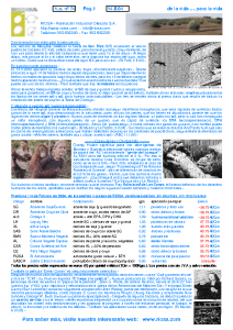 Newsletter RIOSA 2004-02-14