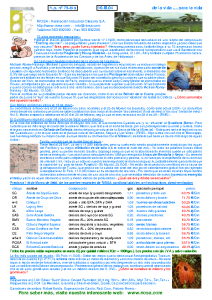 RIOSA Newsletter 2004-03-10