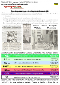 Newsletter RIOSA 2001-07-16